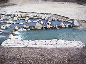 写真-4 魚道下流に創出した淵