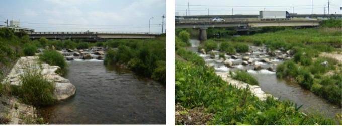 籠川_水際・下流河床の環境の創出