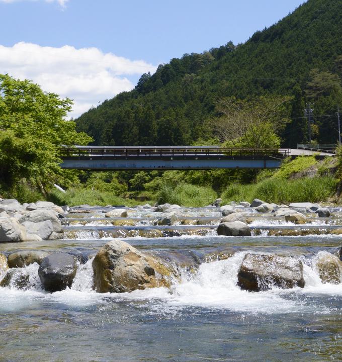 竹原川魚道